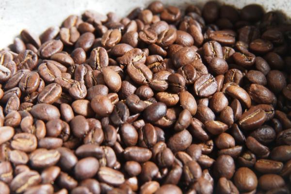 La finca de café à Salento