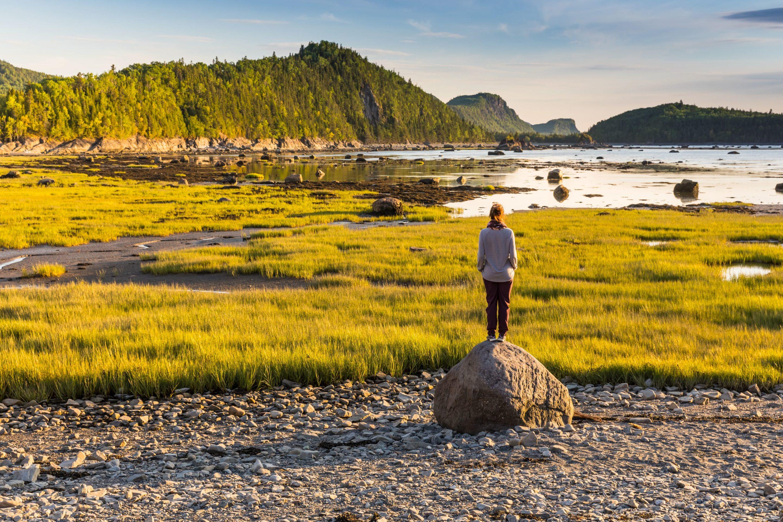 observation du parc national du Bic près de Rimouski