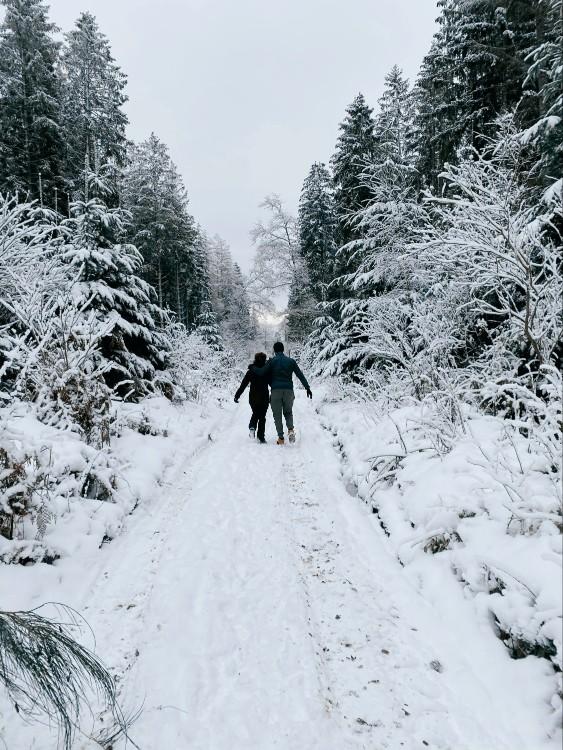 balades Puy de Jume neige Auvergne