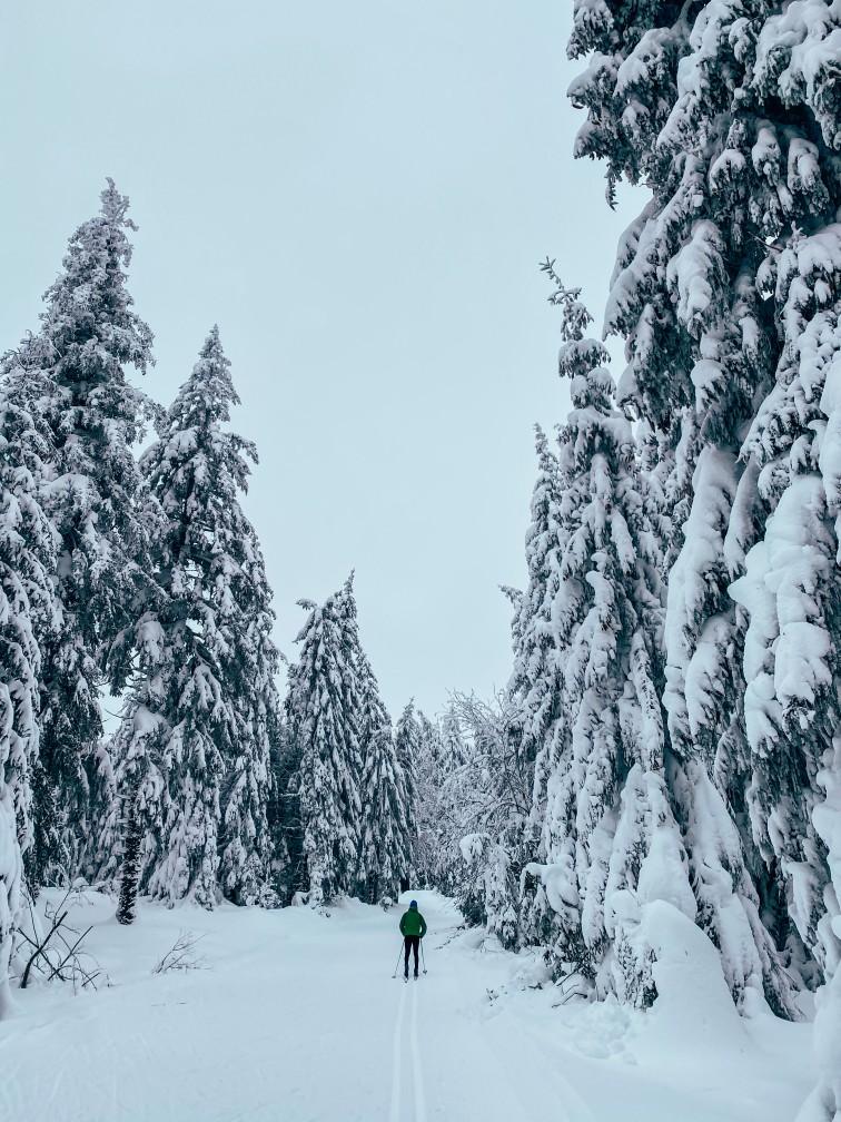 balade en ski de fond Lac Pavin en Auvergne